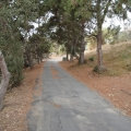 home-for-rent-fallbrook-ca-4